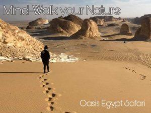 Meditatieve Tour in Egypte